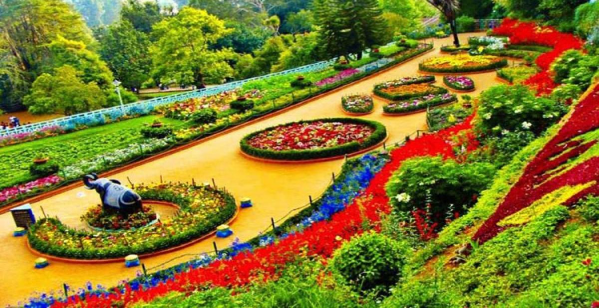 काठमाडौंका ३० ठाउँमा पार्क बनाउँदै महानगर, यी ठाउँमा बन्दैछन् यस्ता पार्क_img