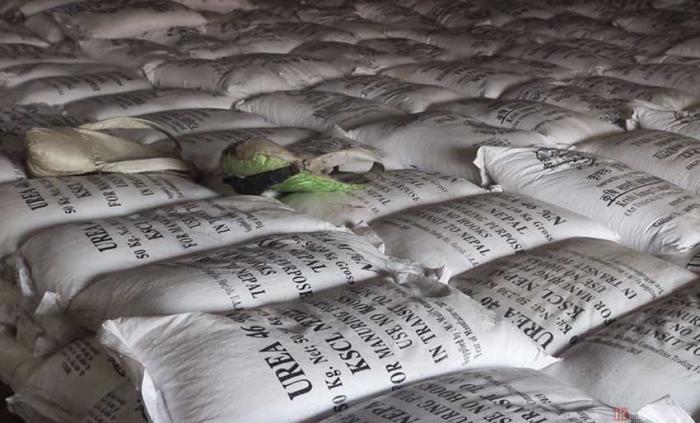 किसानको खेतमा हाल्नुपर्ने मल कलकत्ताको 'क्वारेन्टिन'मा, अनेक बाहना बनाउँदै आयातमा ढिलाइ