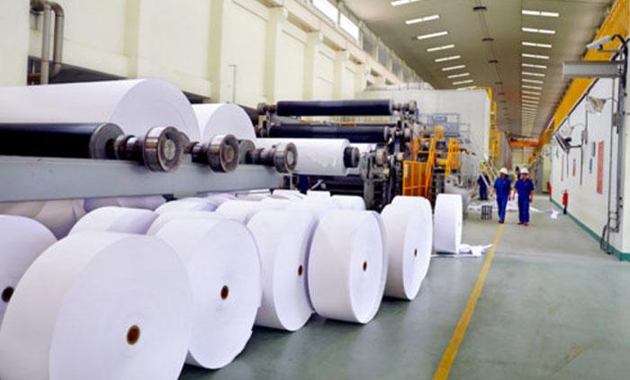 ५० करोड लगानीमा कागज उद्योग सञ्चालनमा, कार्टुन उत्पादन प्राथमिकतामा