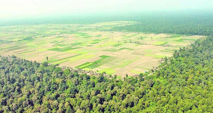 निजगढ विमानस्थल बन्ने जग्गाको मुआब्जा धमाधम बाँडिँदै, प्रतिकट्ठा कति पाउँछन