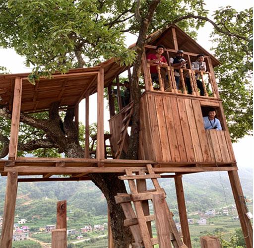 जहाँ पर्यटक तान्न १५ लाख खर्चेर उद्यानसहित रूखमाथि बनाइयो 'घर'